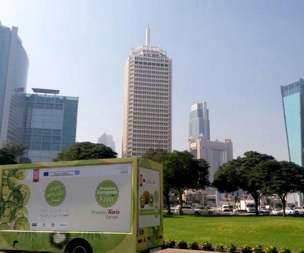 Dubai truck 4