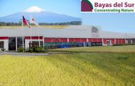 BAYAS DEL SUR — CONCENTRATING NATURE