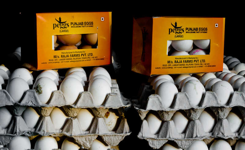 Punjab Eggs- Wholesome, Tasty, Hygienic
